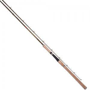 Salmon steelhead spinning fishing rod for Tica fishing rods