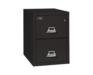Fire King 2 Hour Rated File Cabinet 2 Drawers